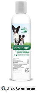 Bayer Advantage treatment shampoo for dogs and puppies 12oz.