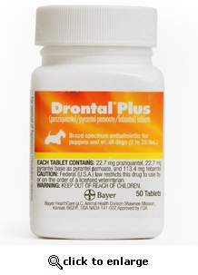 Drontal Plus for Dogs 22.7 mg (small) per tablet