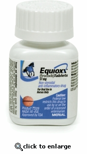 Equioxx Firocoxib Tablets for Horses 57mg SINGLE tablet