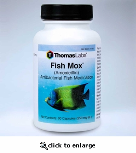 Fish Mox (Amoxicillin) 250mg 60 ct
