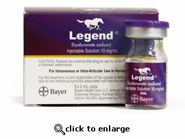 Legend Equine 2 mL 10 mg/mL