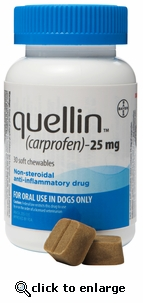 Quellin 25mg 60 chewables