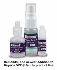 Remend by Bayer