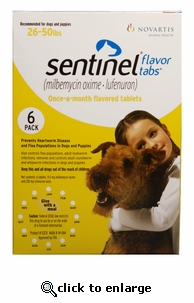 Sentinel Yellow 6 MONTH for Dogs and Puppies 26-50 lbs