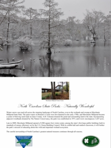 Merchants Millpond State Park Note Cards