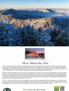 Mount Mitchell State Park Note Cards