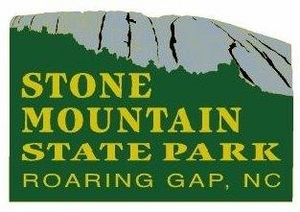 Stone Mountain  Lapel Pin