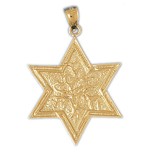 14K Gold Star of David 14K Gold w/Tree of Life Pendant