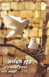 Began Hashalom -  A Marital Guide for Men Only   Hebrew