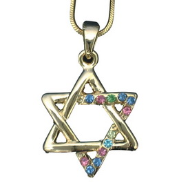 RODIUM PENDANT-  MAGEN DAVID + CHAIN