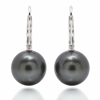 Black South Sea Pearl Earrings