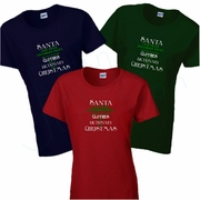 Christmas Women�s T-Shirt/Funny Santa Saw Your Facebook Posts, You�re Getting Clothes And A Dictionary For Christmas Shirt/Christmas Gift