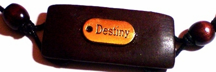 Destiny Tag Large