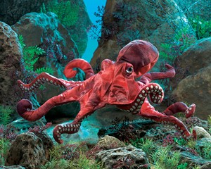 Folkmanis Puppet <br>Red Octopus