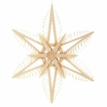 Wooden Star Ornament 105 (13 Inches) - Martina Rudolph