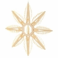 Wooden Star Ornament 107 (12 Inches) - Martina Rudolph