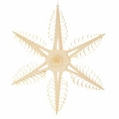 Wooden Star Ornament 113 (9 inches) - Martina Rudolph