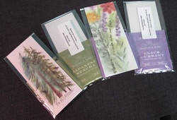 Credo Bookmarks with Tea