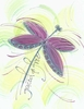 Dragonfly Greeting Card, blank inside