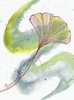Ginkgo Leaf Greeting Card, blank inside