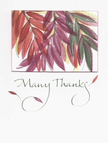 Many Thanks Greeting Card, blank inside