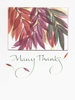 Many Thanks Greeting Card, set of 6 blank notes