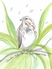 Sparrow Greeting Card, blank inside
