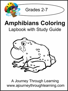 Amphibians Coloring Lapbook with Study Guide-8.00