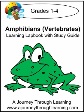 Exploring Amphibians Grades 1-4 Lapbook with Study Guide--8.00
