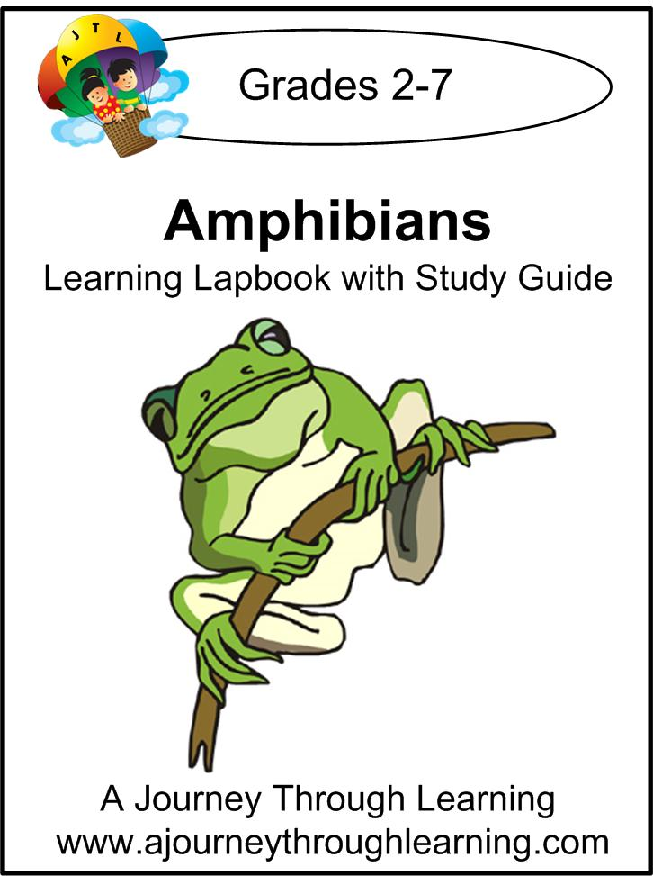 amphibians amphibian sample Unesco – eolss sample chapters tropical biology and conservation management - vol viii - threats to amphibians in tropical regions - jean-marc hero and kerry kriger.