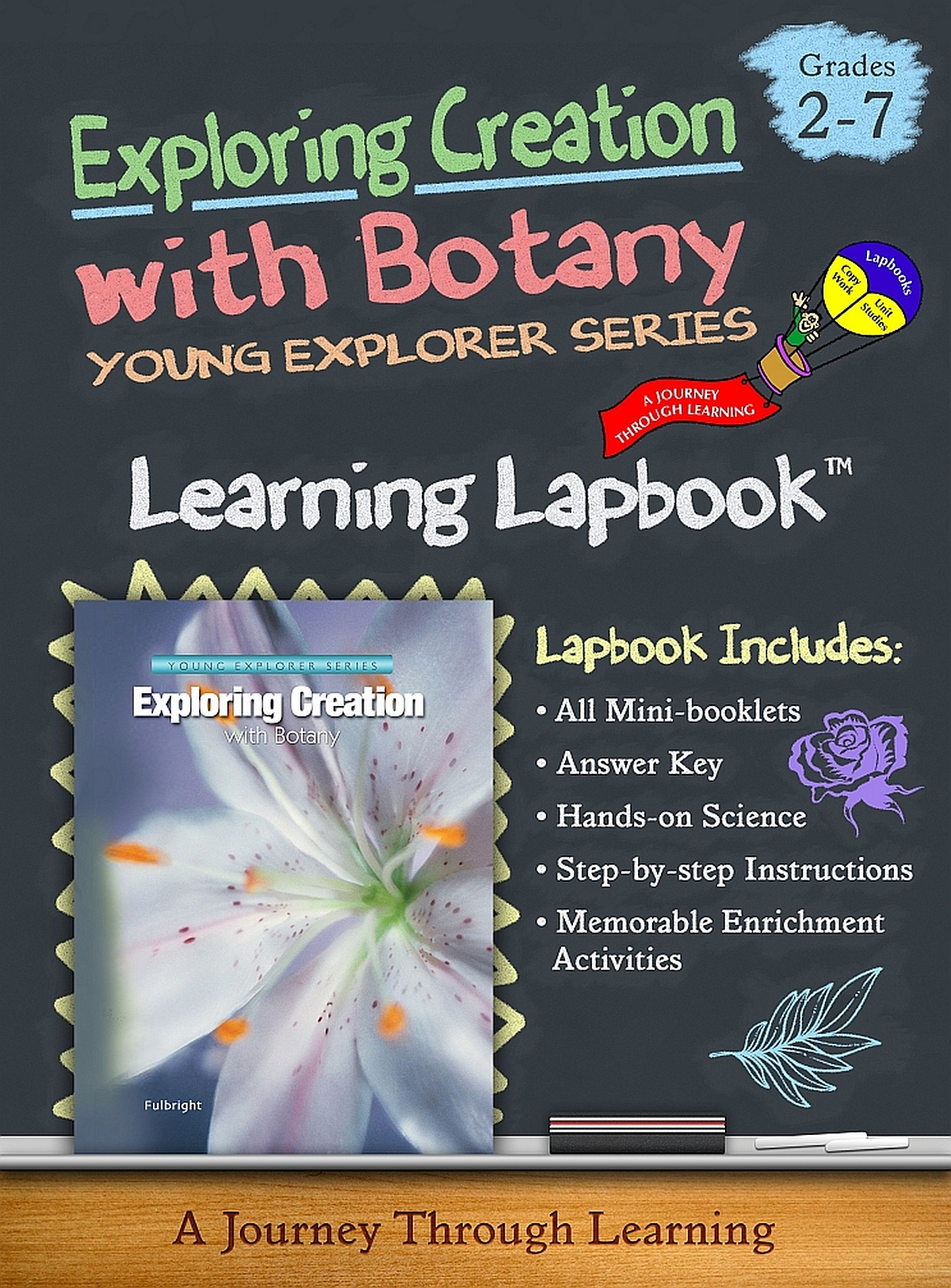 Apologia/Jeannie Fulbright Lapbooks