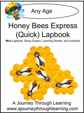 Honey Bees Express (Quick) Lapbook