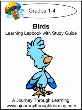 Birds Grades 1-4 Lapbook with Study Guide--8.00