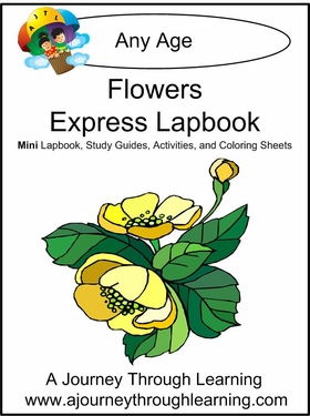 Flowers Express (Quick) Lapbook