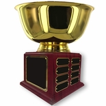 10 INCH DIAMETER GOLD BOWL PERPETUAL TROPHY COMES WITH 16 NAME PLATES