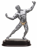 12 INCH FEMALE BODY BUILDER ANTIQUE SILVER FINISH TROPHY