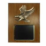 7 X 9 INCH SMALL SIZE MODERN EAGLE PLAQUE