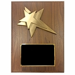 7 X 9 INCH SMALL SIZE MODERN STAR PLAQUE
