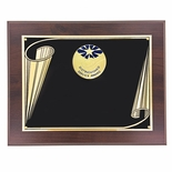 8 X 10 AWARD PLAQUE WITH 2 INCH DISTINGUISHED SERVICE AWARD MEDALLION INSERT