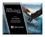 8 X 10 INCH EAGLE GLASS PLAQUE WITH BEVELED EDGE