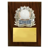 8 X 10 INCH FULL COLOR RAISE MODELED VOLLEYBALL PLAQUE