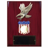 9 X 12 INCH EAGLE AND AMERICAN SHIELD PLAQUE HOLDS 2 INCH MILITARY INSERT
