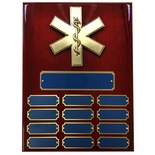 9 X 12 PERPETUAL EMT PARAMEDIC STAR OF LIFE PLAQUE ON PIANO CHERRY FINISH BOARD