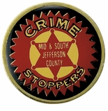 CRIME FIGHTER PIN