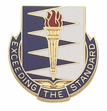 EXCEEDING THE STANDARD INSIGNIA