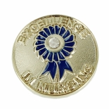 EXCELLENCE IN NURSING LAPEL PIN