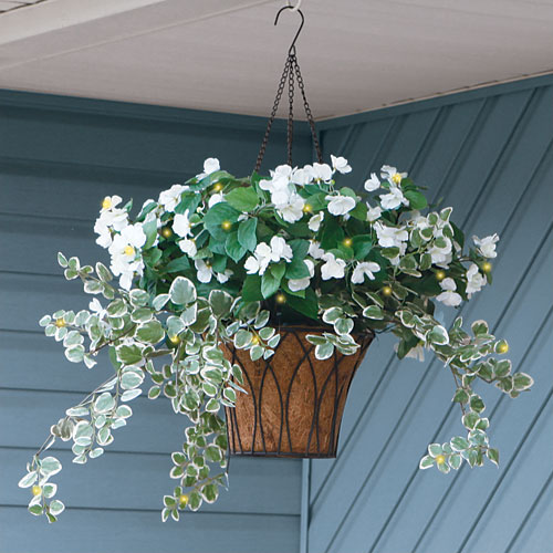 Hanging Flower Baskets With Lights : Pin by colleen nelson on hanging plants