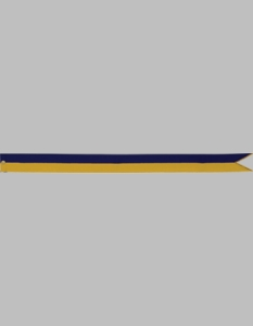 Custom Navy & Gold Streamer