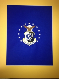 U.S. Air Force Miniature Framed Organizational Flags