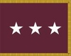 U.S. Army Medical Department Lieutenant  General Flag (3 Star)
